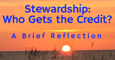 Stewardship: Who Gets the Credit?